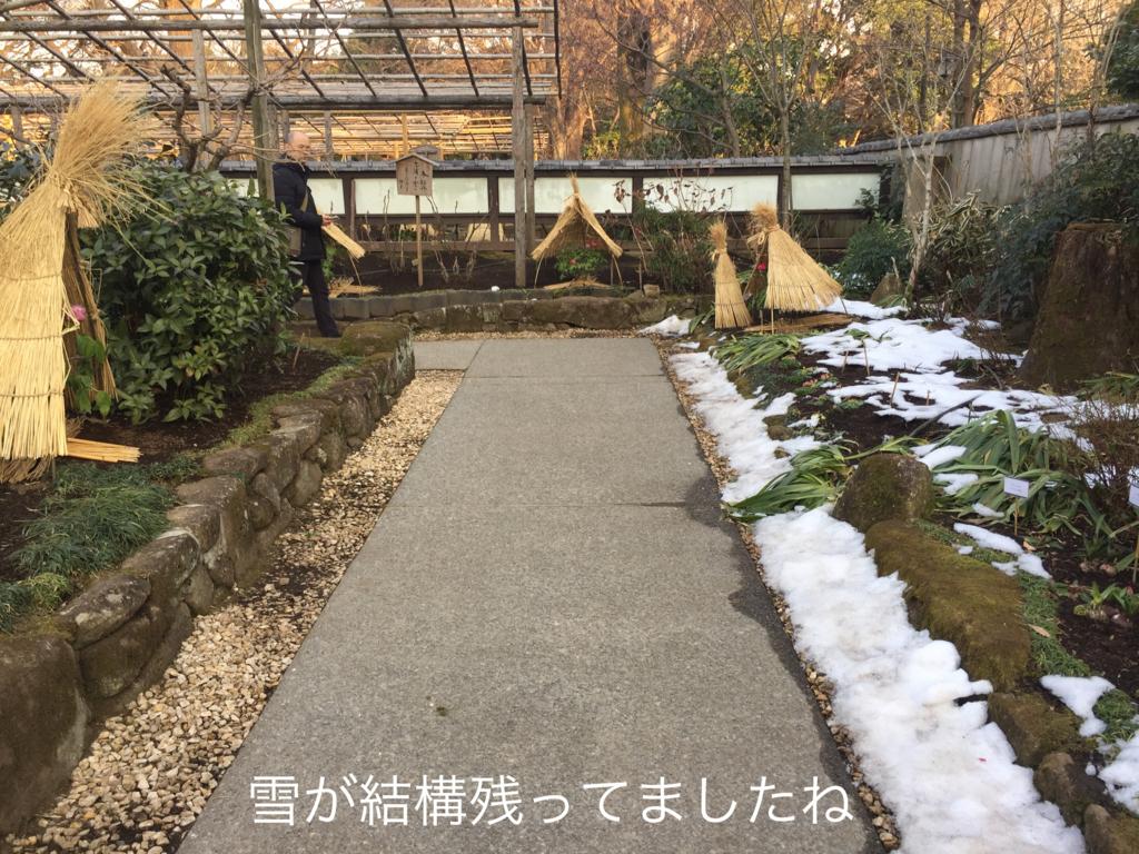 f:id:karutakko-muratan:20180210063329j:plain