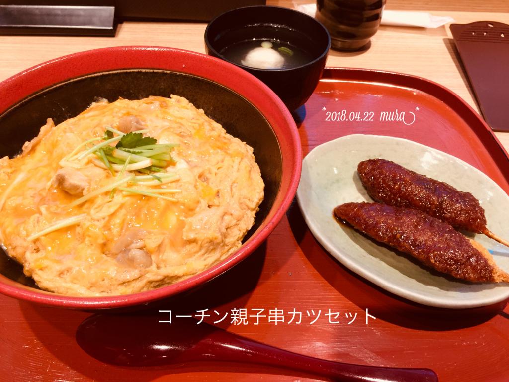 f:id:karutakko-muratan:20180423102924j:plain