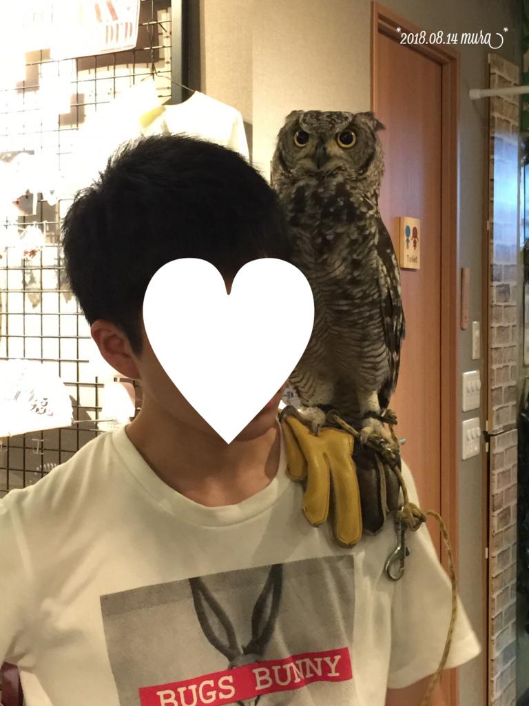 f:id:karutakko-muratan:20180815113824j:plain