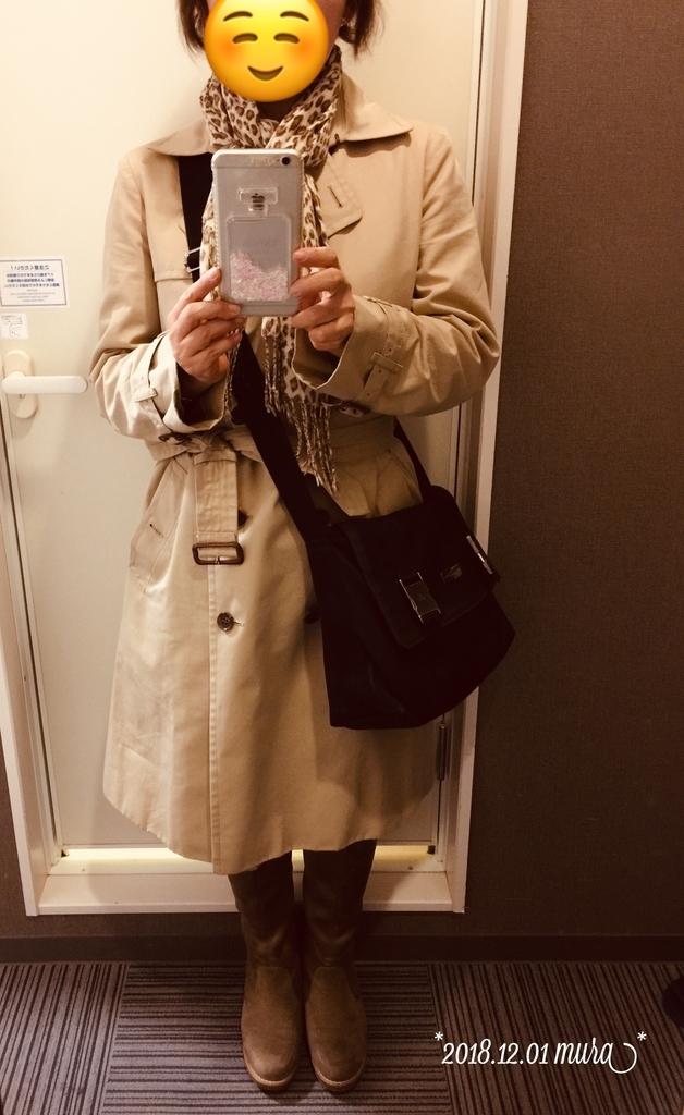 f:id:karutakko-muratan:20181201215450j:plain