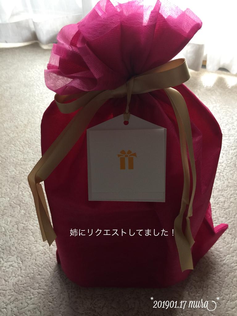 f:id:karutakko-muratan:20190117100227j:plain