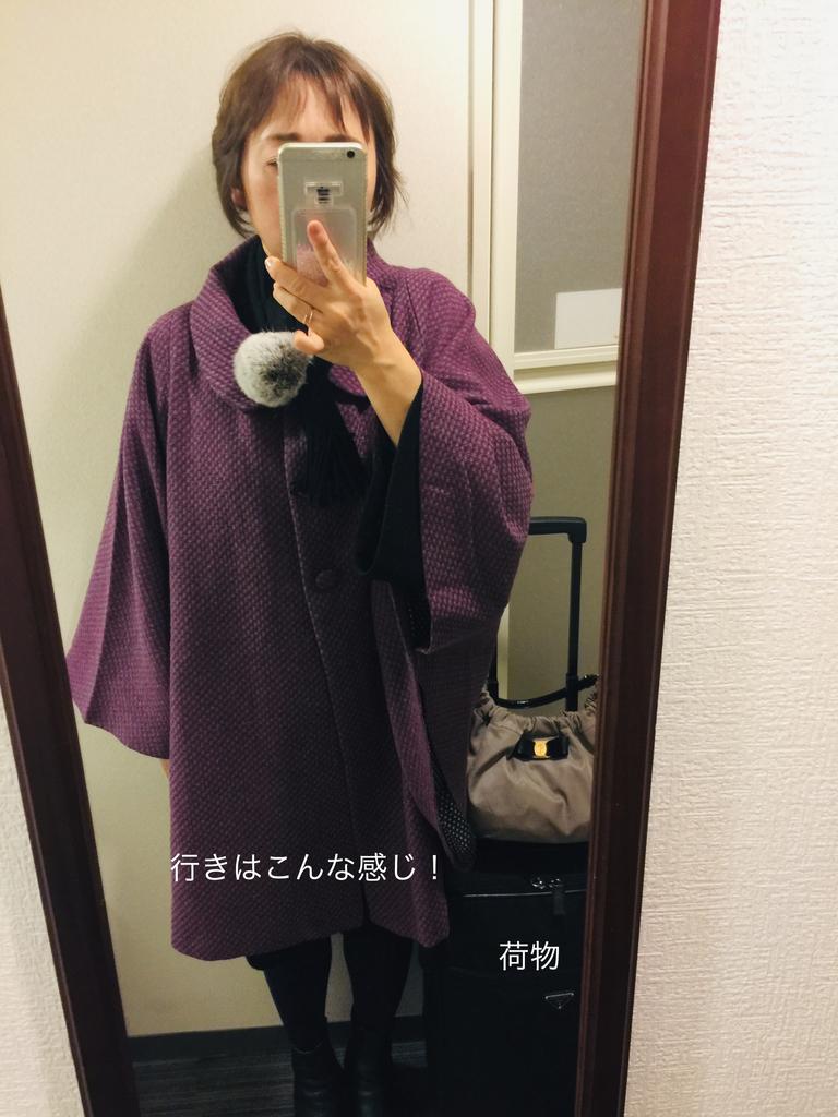 f:id:karutakko-muratan:20190125235201j:plain