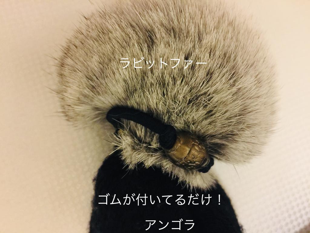 f:id:karutakko-muratan:20190128101504j:plain
