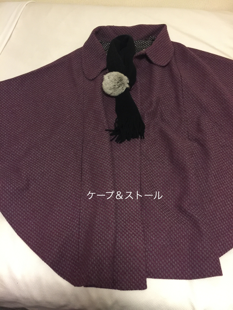 f:id:karutakko-muratan:20190128101546j:plain