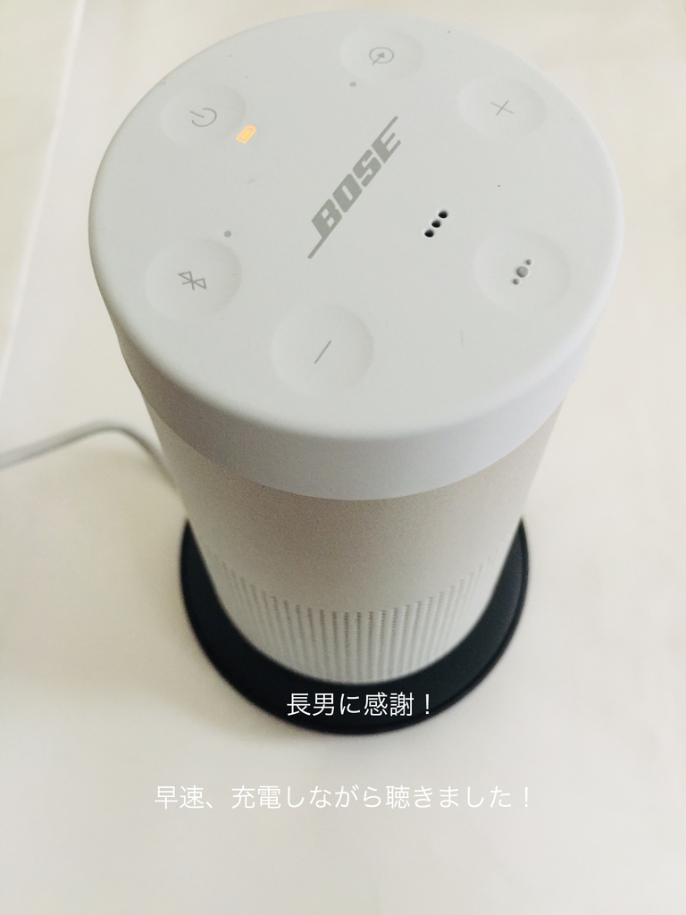 f:id:karutakko-muratan:20190129104517j:plain