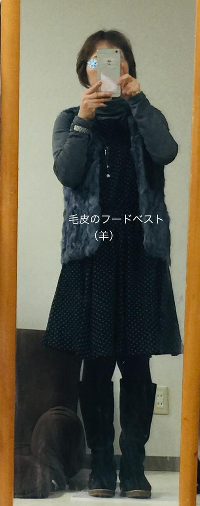 f:id:karutakko-muratan:20190202095410j:plain