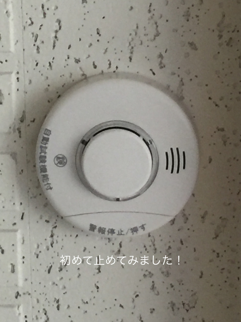f:id:karutakko-muratan:20190301092945j:plain