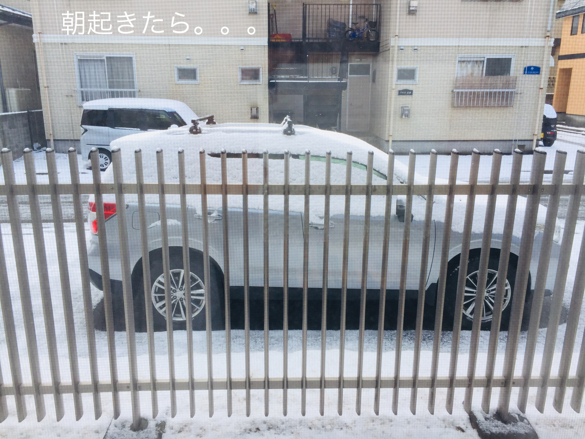 f:id:karutakko-muratan:20190324102141j:plain
