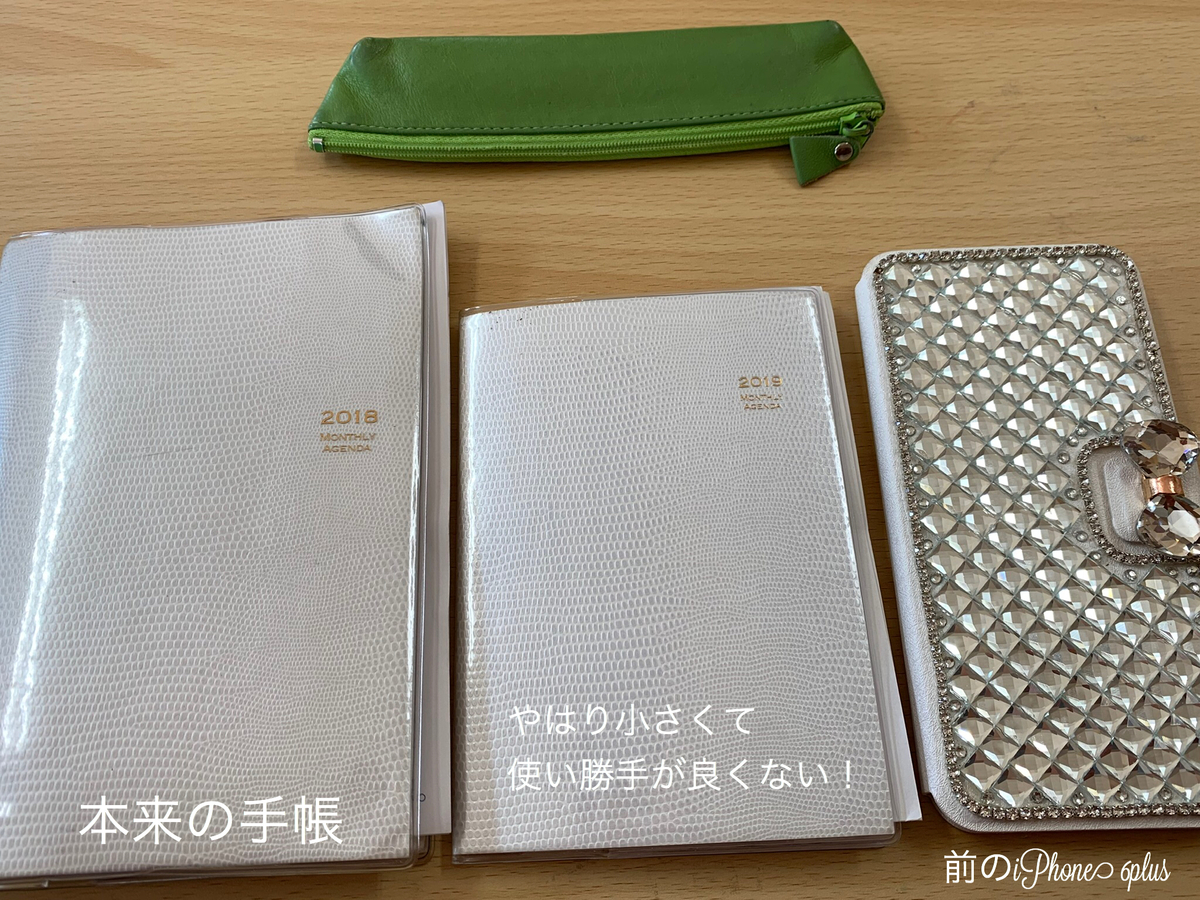 f:id:karutakko-muratan:20190329105735j:plain
