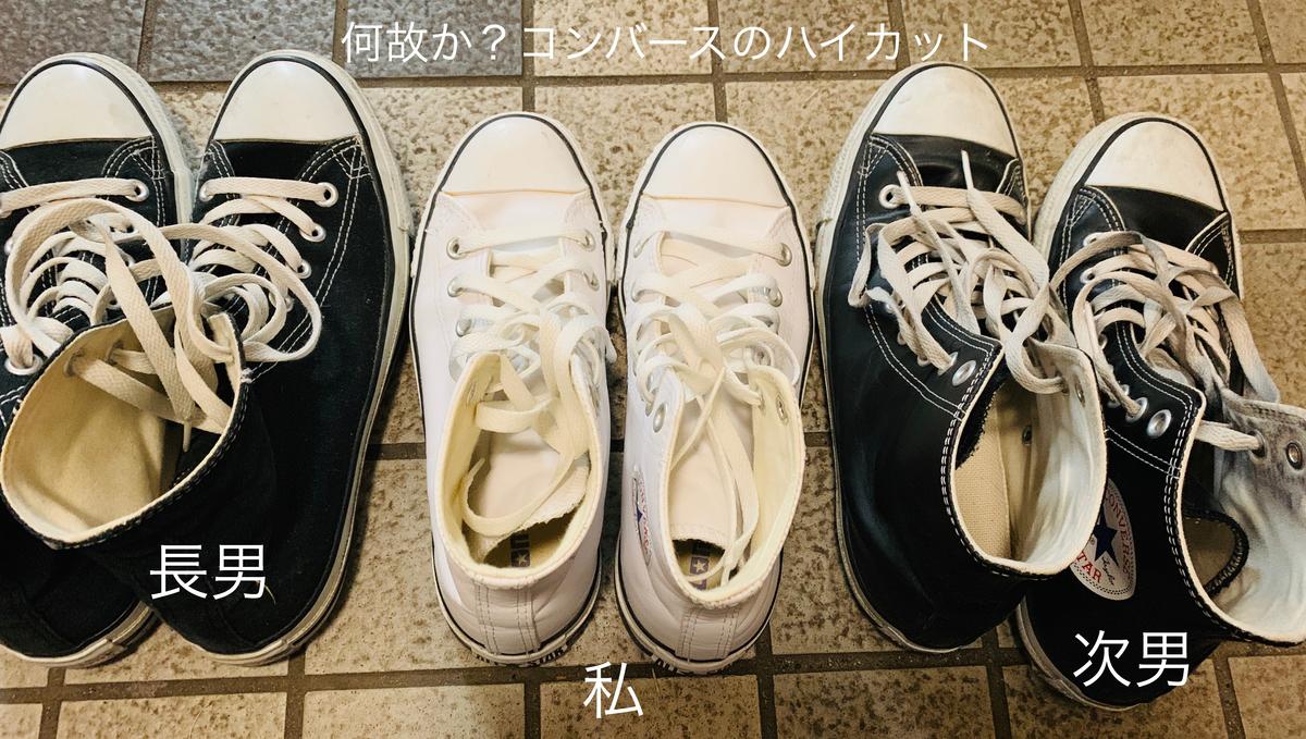 f:id:karutakko-muratan:20190511094712j:plain
