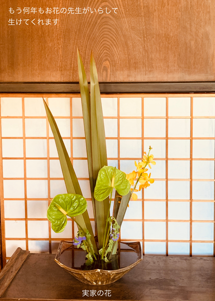 f:id:karutakko-muratan:20190612101607j:plain