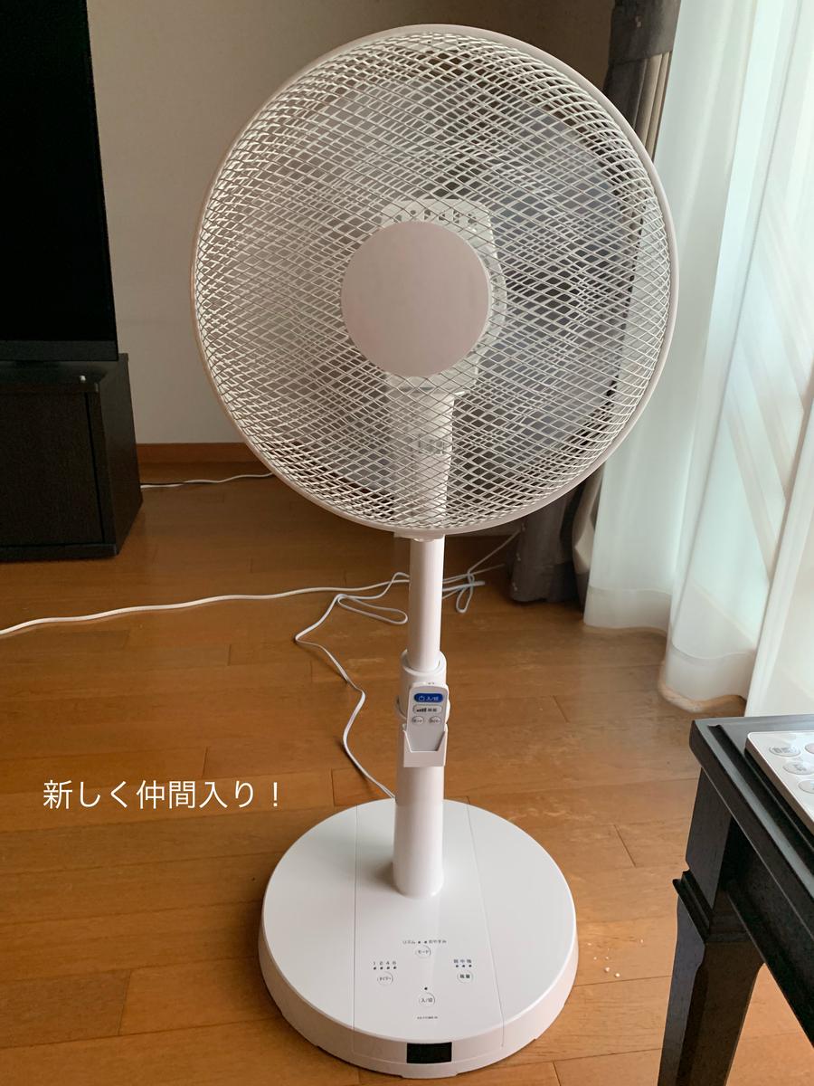 f:id:karutakko-muratan:20190807091728j:plain