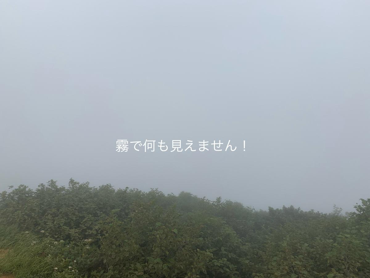 f:id:karutakko-muratan:20190812093717j:plain