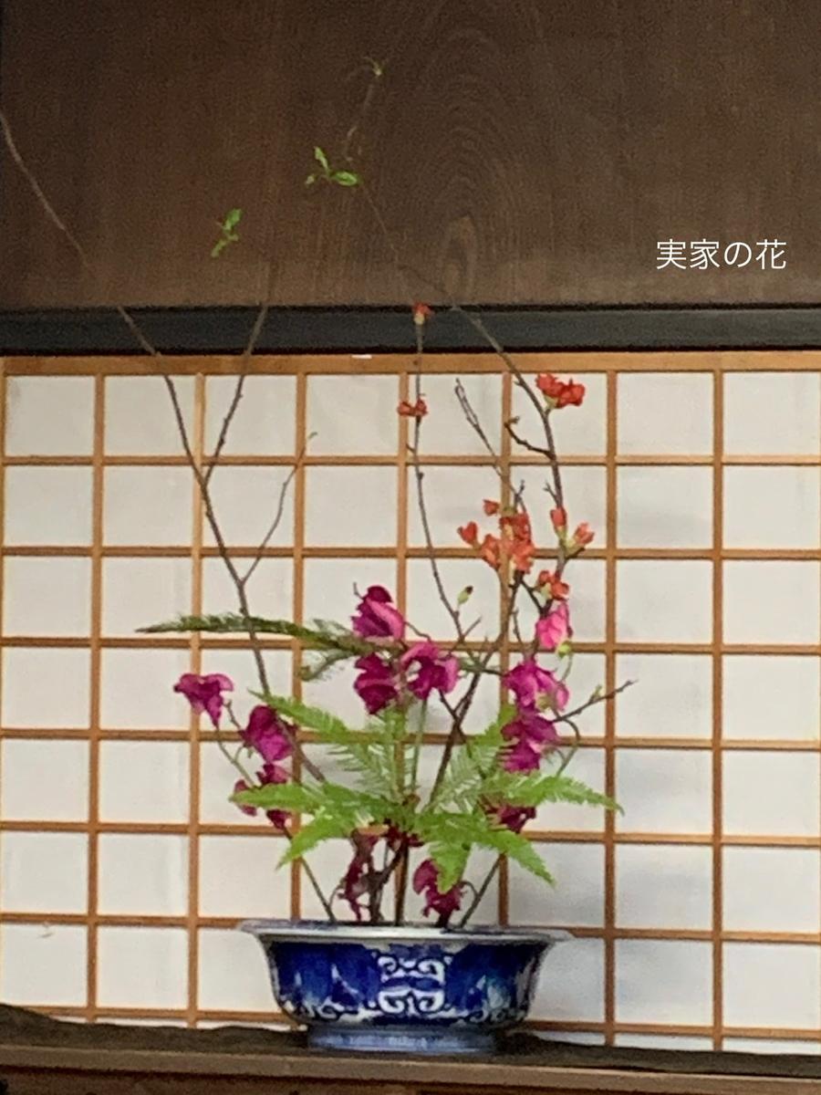 f:id:karutakko-muratan:20200117094454j:plain