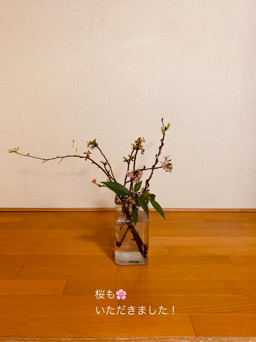 f:id:karutakko-muratan:20200219092945j:plain