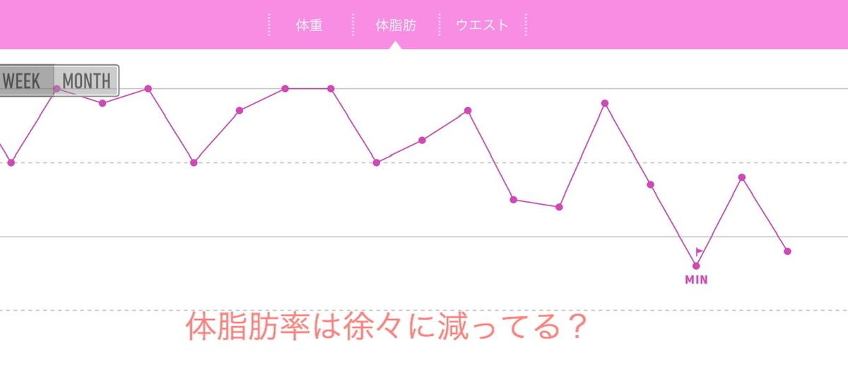 f:id:karutakko-muratan:20200630102652j:plain