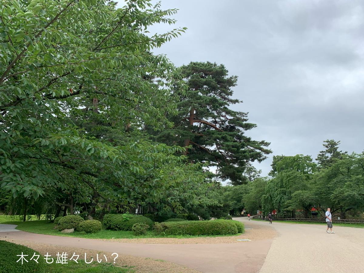 f:id:karutakko-muratan:20200726234025j:plain