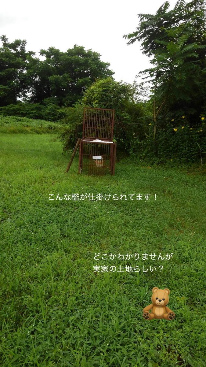 f:id:karutakko-muratan:20200730095605j:plain