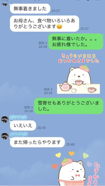 f:id:karutakko-muratan:20210118121657j:plain