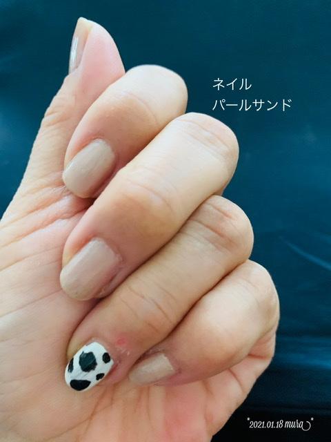 f:id:karutakko-muratan:20210119110640j:plain