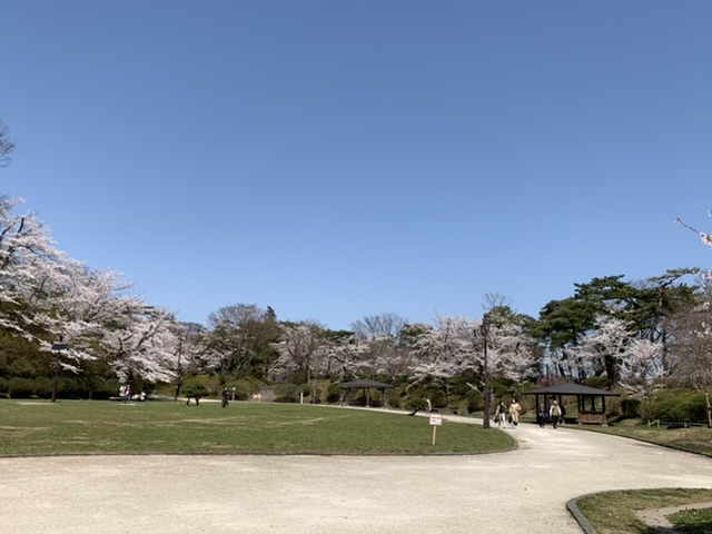 f:id:karutakko-muratan:20210413104326j:plain
