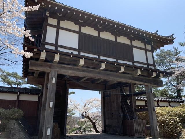 f:id:karutakko-muratan:20210413104455j:plain
