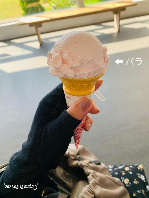 f:id:karutakko-muratan:20210516101043j:plain