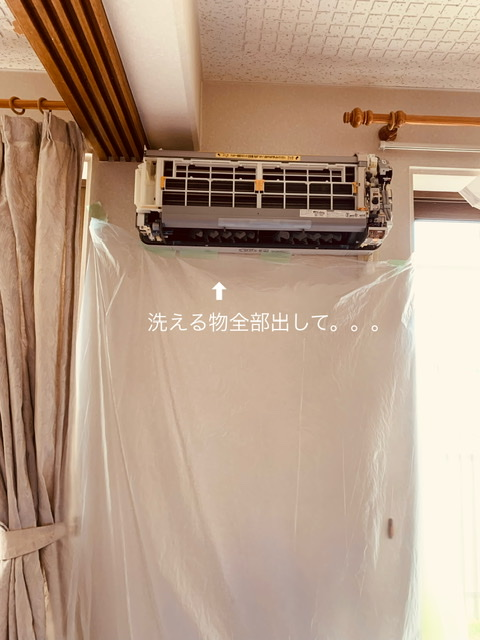 f:id:karutakko-muratan:20210617104220j:plain