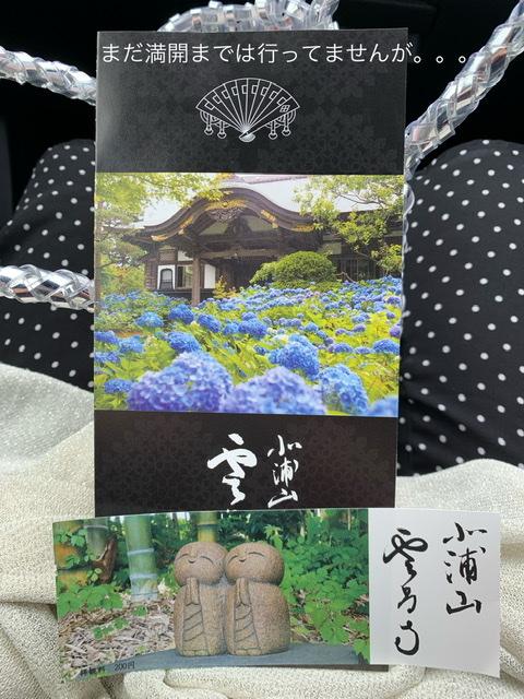 f:id:karutakko-muratan:20210622110422j:plain