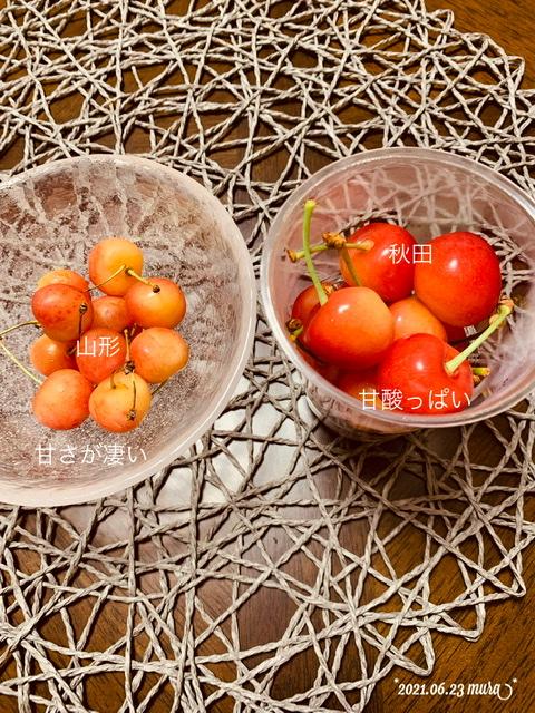 f:id:karutakko-muratan:20210624103318j:plain