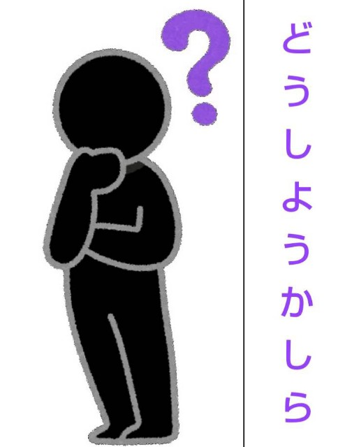 f:id:karutookaruto:20190127185550j:image