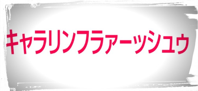 f:id:karutookaruto:20190208202352j:image