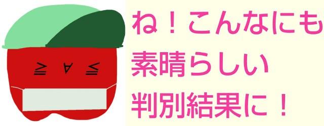 f:id:karutookaruto:20190321083402j:image