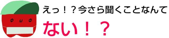 f:id:karutookaruto:20190420191613j:image