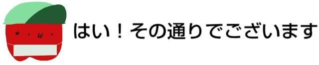 f:id:karutookaruto:20190420191845j:image