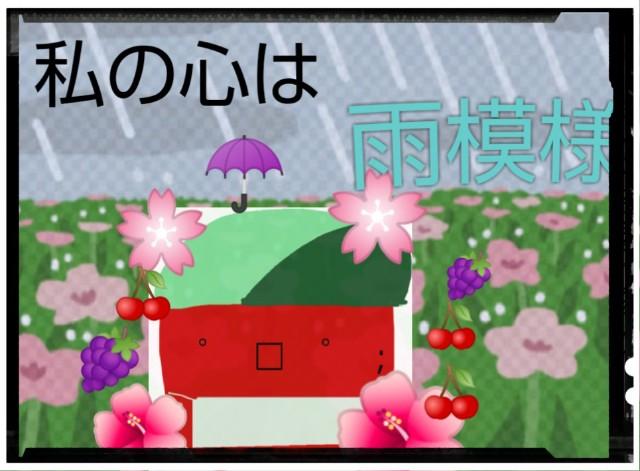 f:id:karutookaruto:20190613183453j:image