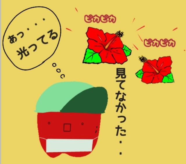 f:id:karutookaruto:20190818182405j:plain
