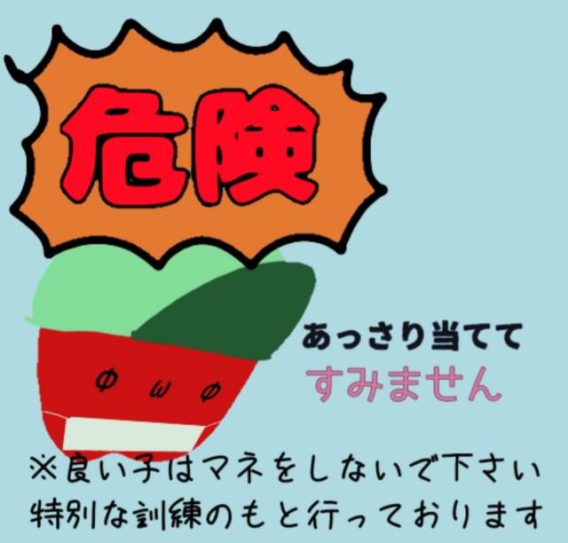 f:id:karutookaruto:20190901154527j:plain