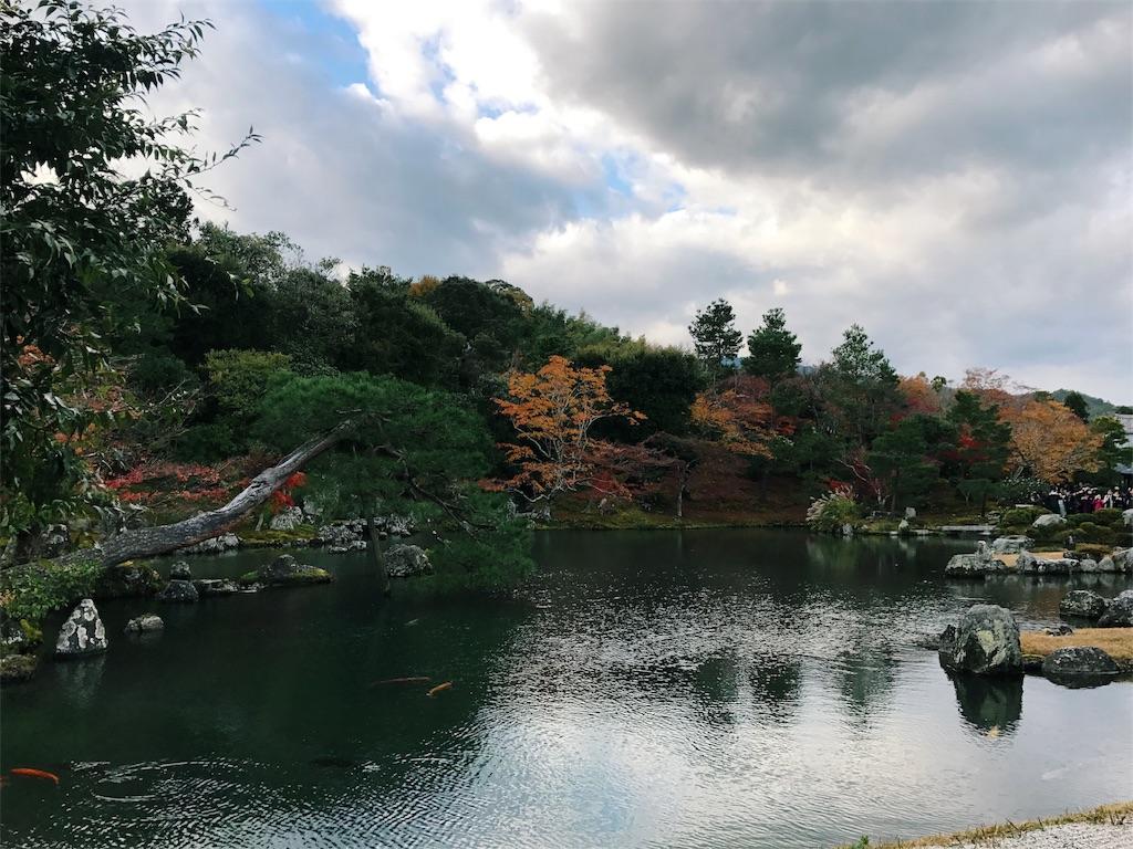 曹源池の奥に紅葉が広がる写真