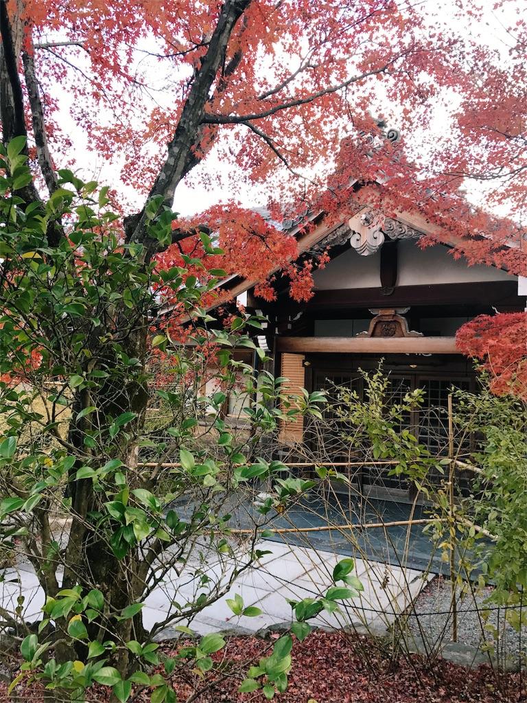 紅葉した木の奥に古い庵が見える写真