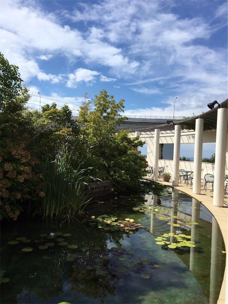 大塚美術館のモネの蓮池と円周を取り囲む白い柱の写真