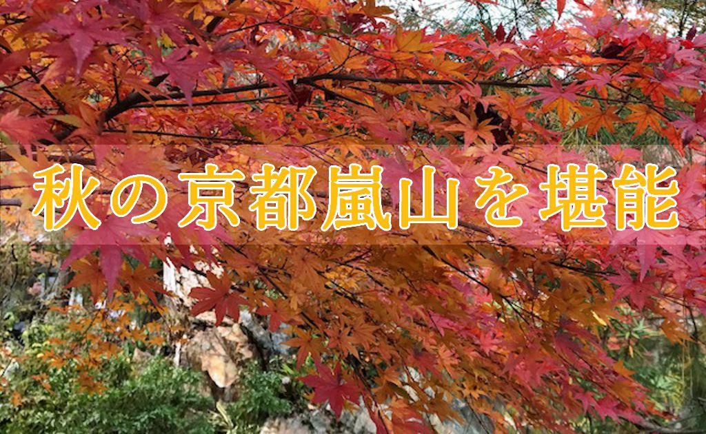 紅葉の背景に秋の京都嵐山を堪能の文字