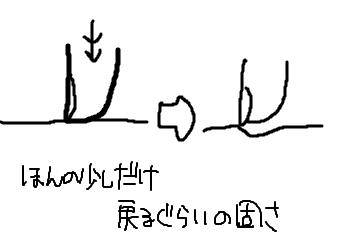 f:id:karyudo_mentosu:20161025195359p:plain
