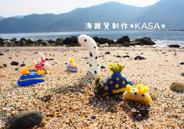 f:id:kasa-umi:20161216235946j:plain