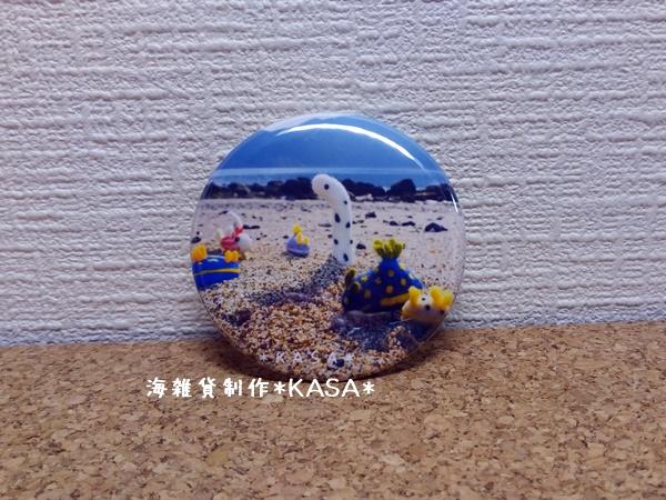 f:id:kasa-umi:20170316223542j:plain