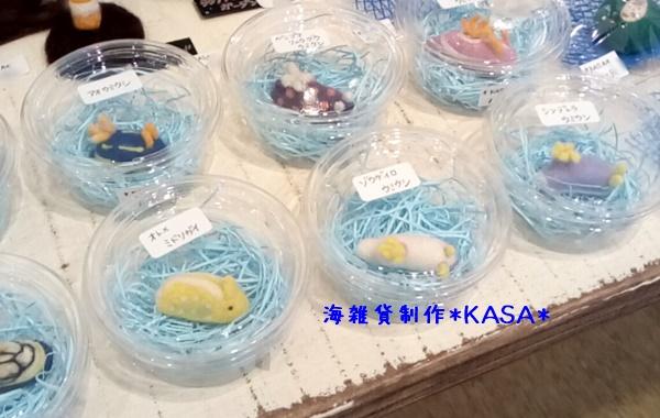 f:id:kasa-umi:20170707234956j:plain