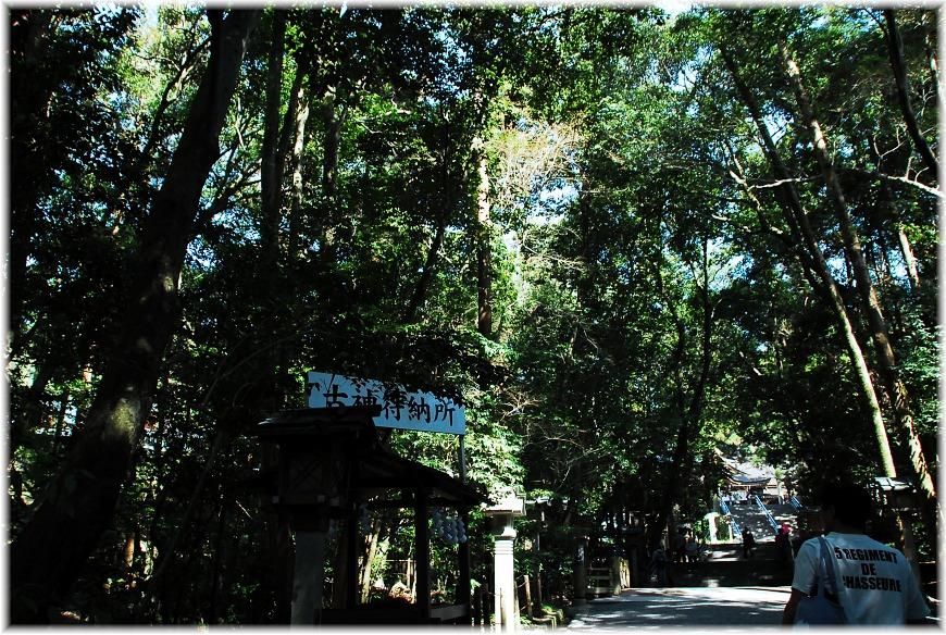 f:id:kasagatayaman:20191108194730j:plain