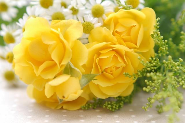 好きな色 黄 イエロー バラ 花言葉