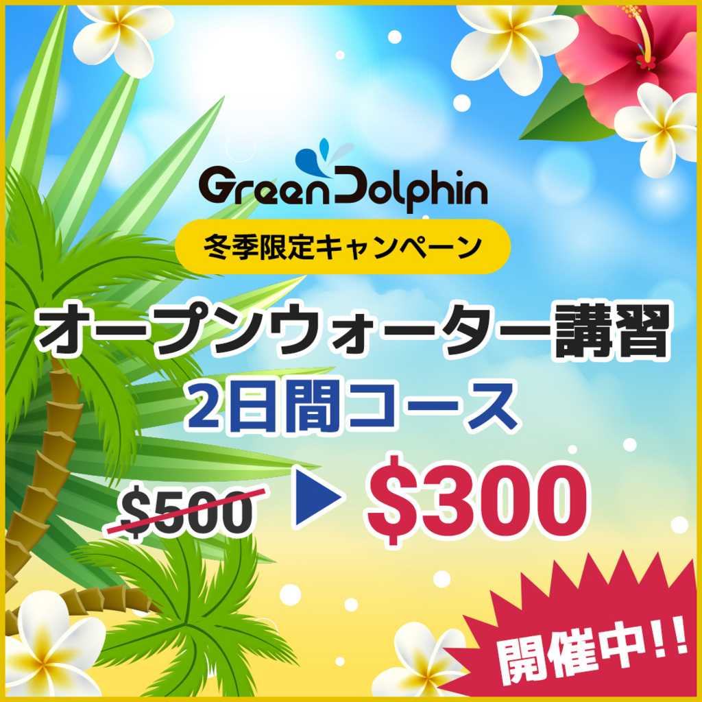 f:id:kashiyama823554:20180125124758j:plain