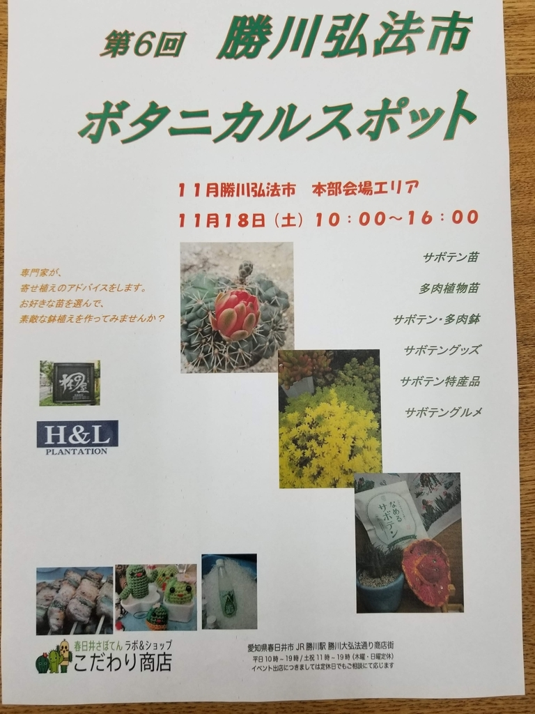 f:id:kasugai-saboten:20181116193854j:plain